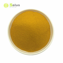 Competitive Price Chinese Chive Seed Extract Powder