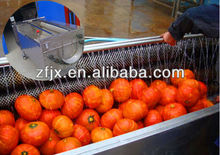 Brush pumpkin washing machine / pumpkin peeling machine