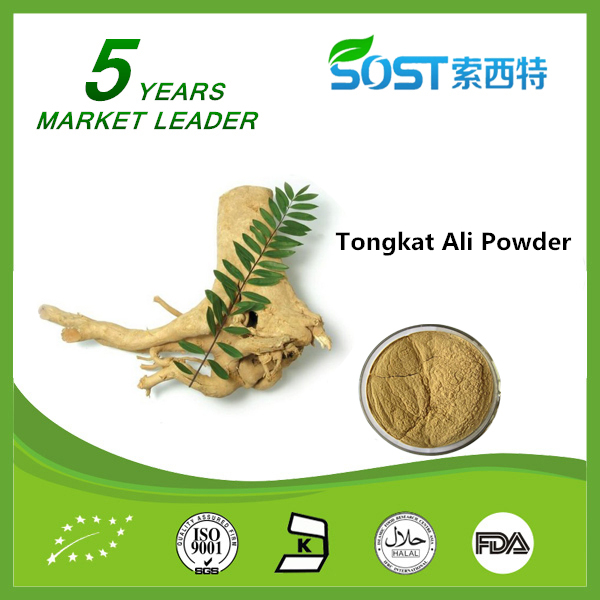 Factory supply bulk Tongkat ali root extract powder