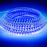 High quality 12V waterproof swimming pool led strip lighting