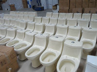 Ceramic Iranian wholesale washdown sanitary ivory toilet