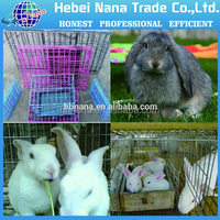 Wire Rabbit Cages Sale