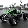 Water Cooled 4 Stroke Racing ATV 250CC Street Quad with EEC COC