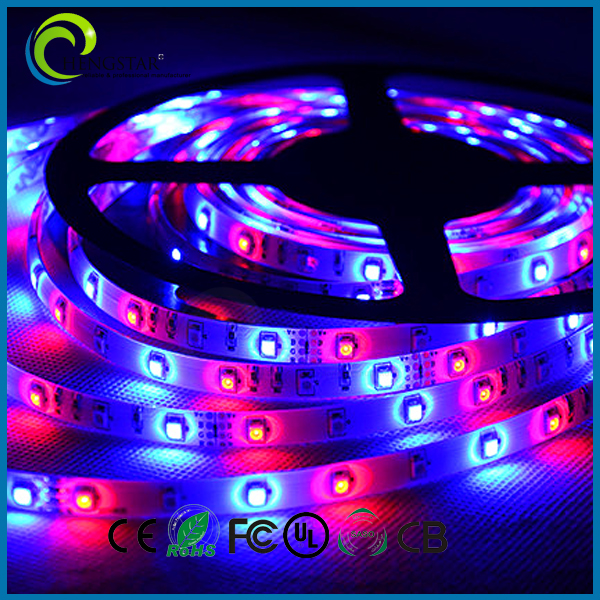 IP68 ce&amprohs approved 12v waterproof warm white flexble 3528 led strip
