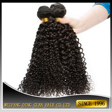 4A Brazilian Mongolian Kinky Curly Remy Hair Weave Afro Kinky Human Hair for Braiding