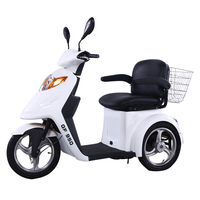 EEC Approved Elderly Electric Tricycle
