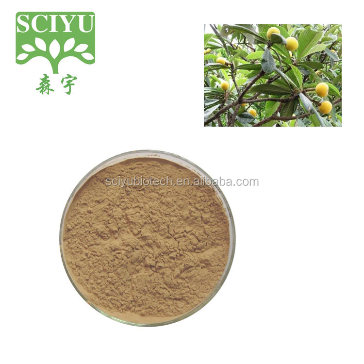 Loquat Leaf Extract , Ursolic Acid Powder 20% 25% 50% 98%
