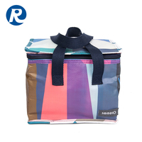 Ruiding Promotional Laminated PP Woven Cheap Insulated Picnic Lunch Cooler Bag For Men