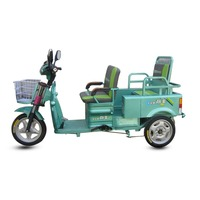 Cheap High Quality 3 Wheel Tricycle Motor