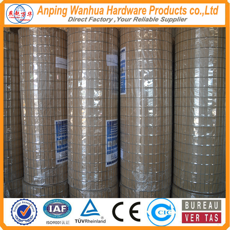 High quality welded mesh factory price