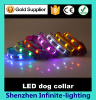 Can be made USB rechargeable item pet/dog collar led/ Led Dog Collars Rechargeable