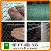 Galvanized\PVC coated Hexagonal wire mesh/Chicken wire mesh\Hexagonal chicken wire mesh(ISO9001:2008 professional manufacturer)