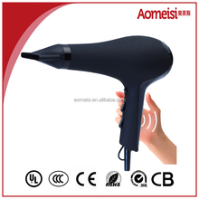 Most Popular Professional Hair Dryer With brushless AC motor