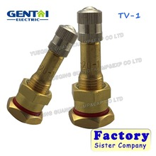 Metal Steel Tubeless Wheel Tyre Valves