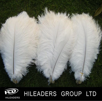Decorative Bleached White Ostrich Feather