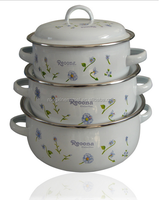 New design steel enamel casserole flower cookware set