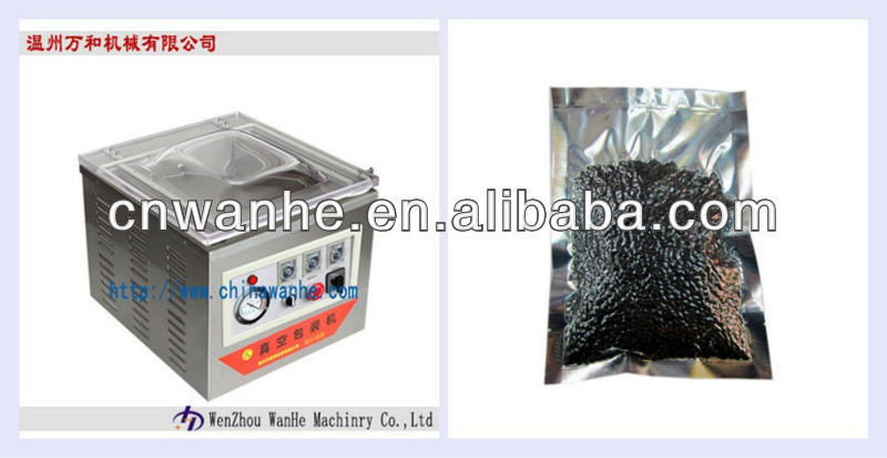 DZ-400/2F fruit and vegetable vacuum packing machine