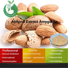 2014 Hot sell almond seed extract amygdalin powder