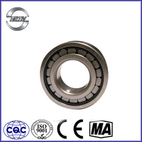 Special Cylindrical Roller Bearing Nonstanderd Bearing