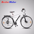 Top Quality Best Price Fashionable 250W Lithium Electric Bicycle