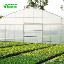 Large Size Agriculture Greenhouse Poly Tunnel