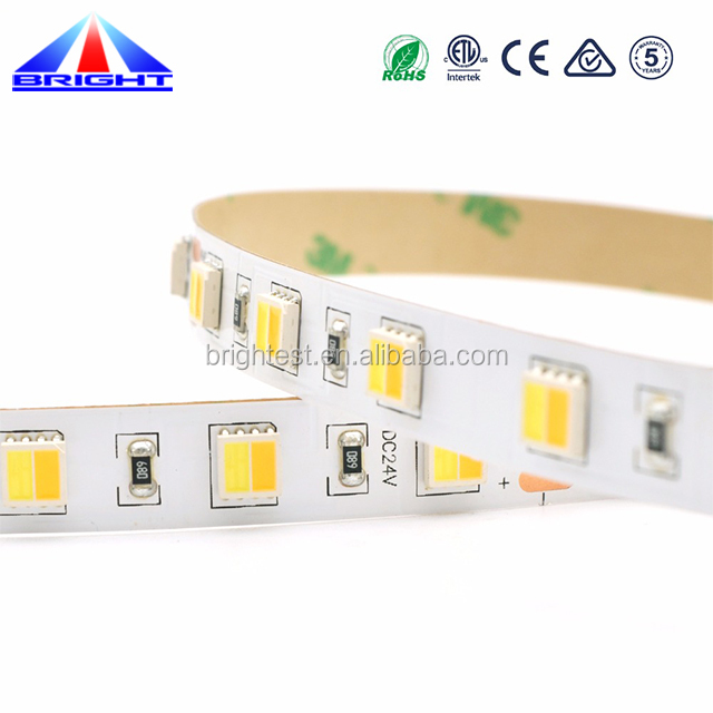 color temperature changing 60led/meter 5050 dimmable led lights strip
