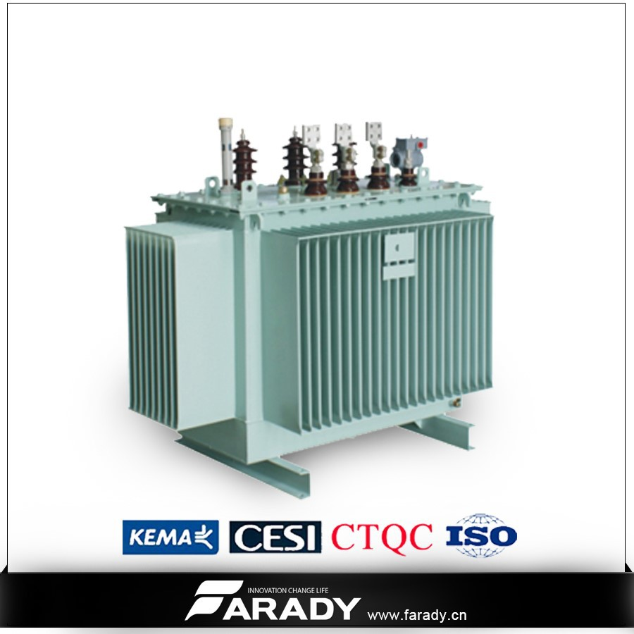 13.2kv 160kva distribution transformator