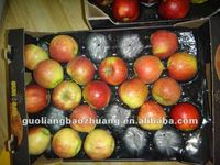Produce Packaging Container 15LB