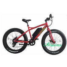 Factory direct 24v 200w electric bike with SGS certificate