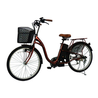 Ce Approved Lithium Battery Electric Bicycle