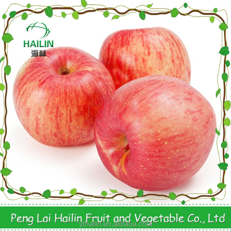 2016 new season yantai apple fresh Fuji apple good price for export