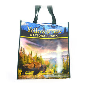 Promotional Various Durable Using Non Woven Recycled Bag