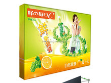 pop up display banner with aluminium alloy frame LT-09L2-A