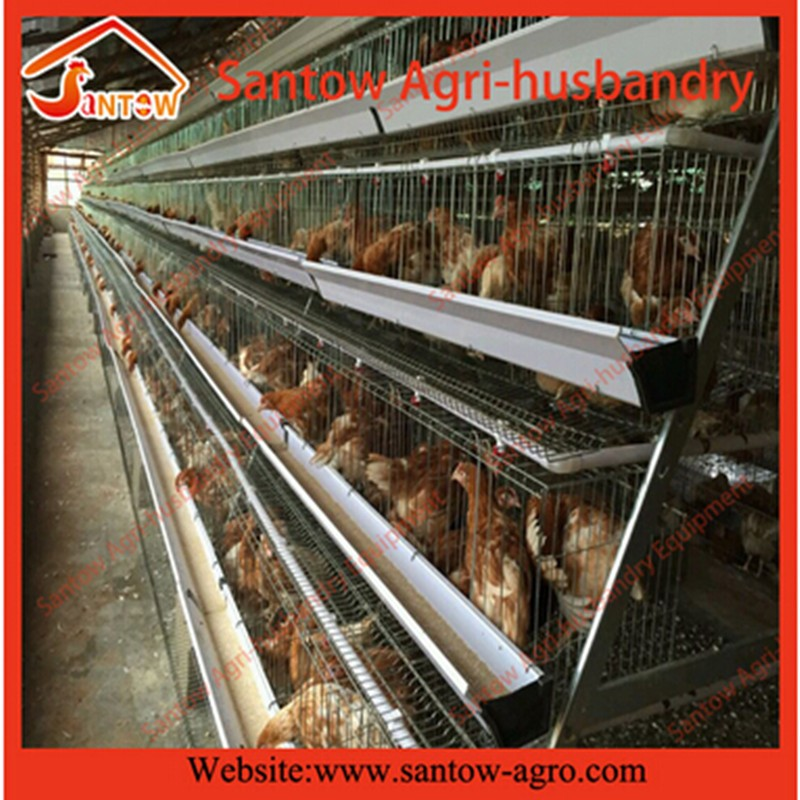 China factory direct sale chicken cage for layer of 4 floors