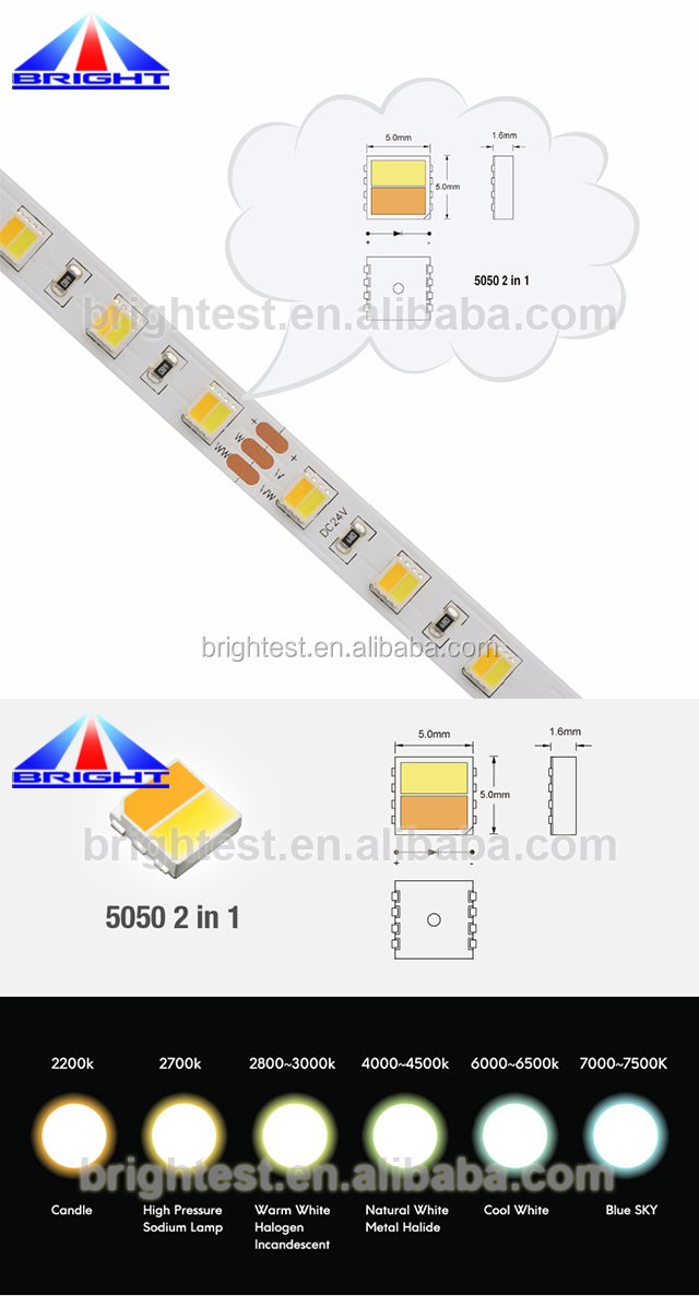 2700K-6500K color temperature changing 12V/24V LED flexible 5050 led strip light 60 leds per meter