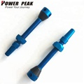 New style colored alloy bicycle wheel presta valves with aluminum dust caps