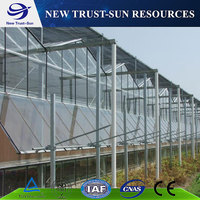 Good Quality Tempered Glass Greenhouse For