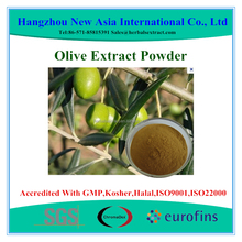 High Quality Olive Leaf Extract Oleuropein 20% HPLC