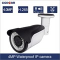 P 2 P outdoor 4.0MP WDR Waterproof IP camera