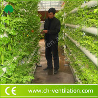 Industrial Eco-friendly commercial greenhouse hydroponics equipment
