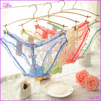 Free Shipping by DHL/FEDEX/SF Ladies underwear Sexy Lace Panties Seamless Transparent Underwear Women Briefs Lingerie
