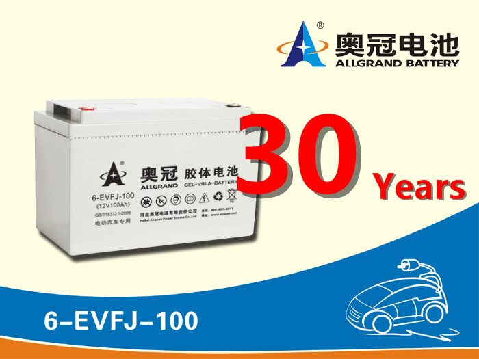 12V100Ah deep cycle lead carbon battery/EVF battery for golf car and Electric tricycle batteries