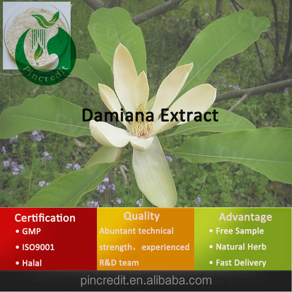 Aphrodisiac for Women Damiana Powder Damiana Extract