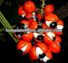 Manufacturer Supply High Quality Guarana Extract