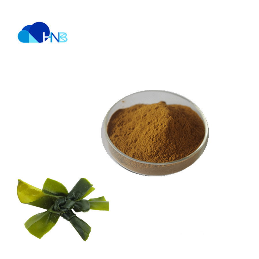 Factory Supply Top Quality Laminaria Japonica Extract Kelp Extract