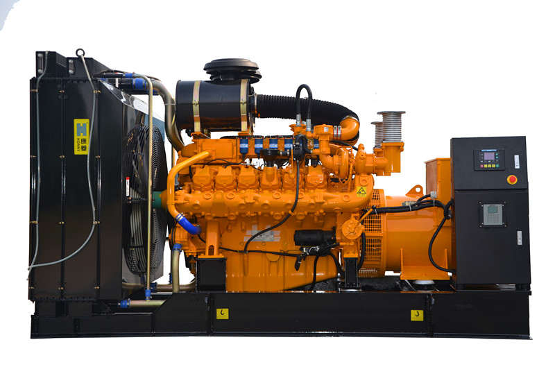 USA Googol Natural Gas Generator set Made in China