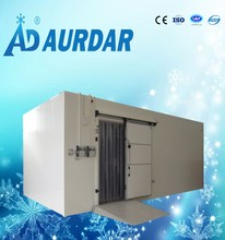 Refrigerators freezers container cold room for fish cold storage
