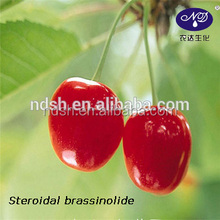 steroidal brassinolide BR 95%TC enhance the resistance agriculture cas no:72962-43-7