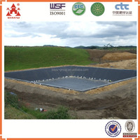 Hydrophilic Swelling Geosynthetic Clay Liner Plastic Liner in Ponds