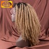 1b 27 ombre color 120% density virgin brazilian kinky curly full lace wig